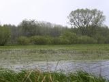 Landschap Polen