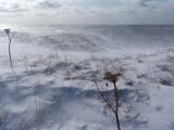 Westkust, sneeuwstorm