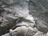 Chauveaubreen gletsjer